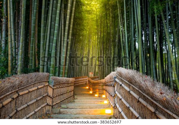 Arashiyama Bamboo Forest Kyoto Japan Stock Photo Edit Now 383652697