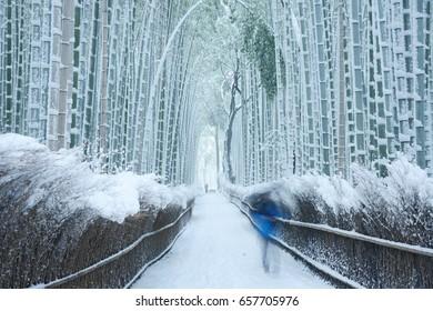 Arashiyama bamboo forest in winter
