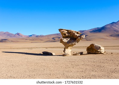 Arbol de Piedra (Stone tree) is an isolated rock formation in the Eduardo Avaroa Andean Fauna National Reserve of Sur Lipez Province, Bolivia, South America