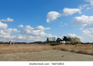 an arbor in reed field, against blue autumn sky and charming clouds, spacious and lonely sight