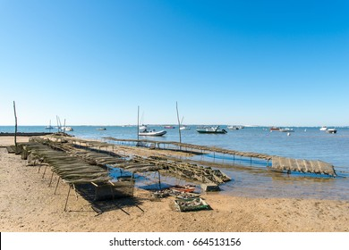 ARCACHON BAY (France), oyster bed