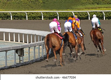 ARCADIA, CA - 13 FEB: The field for The Las Virgenes Stakes digs in for the club house turn at Santa Anita Park on Feb. 13, 2010 in Arcadia, CA.
