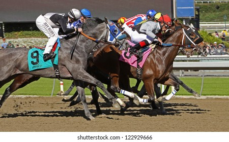 """ARCADIA, CA - DEC 26: The field storms to the finish in the 1st race of the season at historic Santa Anita Park on Dec 26, 2012 in Arcadia, CA. Joel Rosario (red cap) and """"Got Even"""" finish 2nd."""
