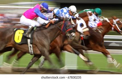 ARCADIA, CA - DEC 26: A field of thoroughbreds storm down the homestretch in the first race of the season at Santa Anita Park on Dec 26, 2010 in Arcadia, CA.