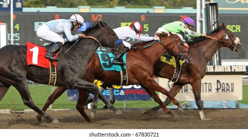 ARCADIA, CA - DEC 26: Rafael Bejarano pilots Thirtyfirststreet to victory in The California Breeders' Champion Stakes at Santa Anita Park on Dec 26, 2010 in Arcadia, CA.