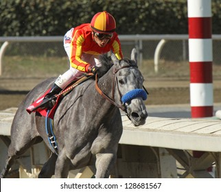 "ARCADIA, CA - FEB 16: Jockey Rafael Bejarano pilots ""Midnight Lucky""  to her first win at Santa Anita Park on Feb 16, 2013 in Arcadia, CA."