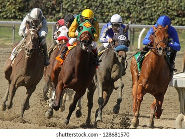 """ARCADIA, CA - FEB 16: Jockeys turn and head down the homestretch in the 3rd race at Santa Anita Park on Feb 16, 2013 in Arcadia, CA. Eventual winner is Kevin Krigger (outside) and """"Cee's the Year""""."""