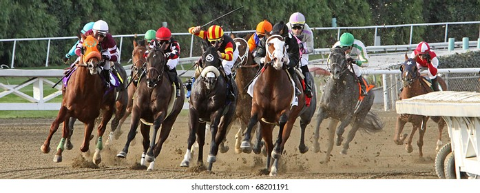 Horse Racing Banner Stock Photos, Images & Photography | Shutterstock