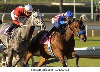 "ARCADIA, CA - JAN 12: Hall of Fame Jockey Mike Smith (blue cap) and ""Fed Biz"" outrun Corey Nakatani and ""Tritap"" to win The San Fernando Stakes at Santa Anita Park on Jan 12, 2013 in Arcadia, CA."
