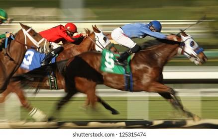 "ARCADIA, CA - JAN 17: Jockey Edwin Maldonado and ""Catienus Gold"" (#5) race to a 3rd place finish in a claiming race at Santa Anita Park on Jan 17, 2013 in Arcadia, CA."