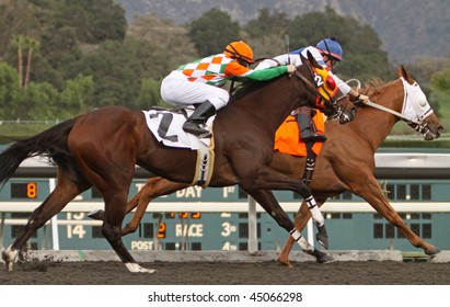 ARCADIA, CA - JAN 9: Jockeys fight for the lead down the homestretch in a claiming race at Santa Anita Park on Jan 9, 2010 in Arcadia, CA.