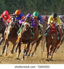 ARCADIA, CA - MAR 5: Jockeys round the turn and head down the homestretch in a race at Santa Anita Park on Mar 5, 2011 in Arcadia, CA.