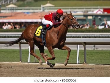 "ARCADIA, CA - MARCH 3: Jockey Martin Garcia and ""Baraja de Oro"" win the first race at Santa Anita Race Track on March 3, 2012 in Arcadia, CA."