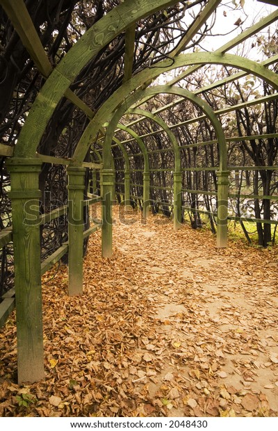 an arch parkway in a garden in the autumn.