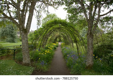 The Arch of Plants with 2 trees as guards