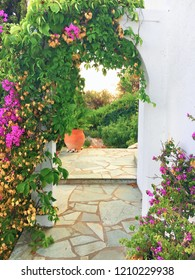 An arch in a white wall in a greek garden with bougainvilea