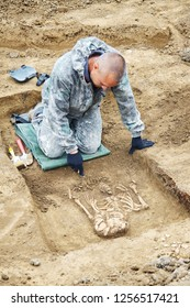 Archaeological excavation. Archaeologist in a digger process. Hands with tools, conducting research on human bones (tomb), part of skeleton and skull in the ground, shovel, brush. Outdoors, close up