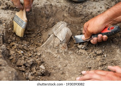 Archaeological excavations, archaeologists work, dig up an ancient clay artifact with special tools in soil - Shutterstock ID 1930393082