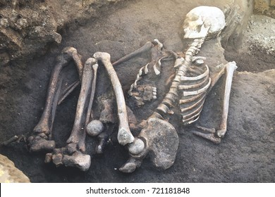 Archaeological excavations and finds (bones of a skeleton in a human burial),   a detail of ancient research, prehistory.