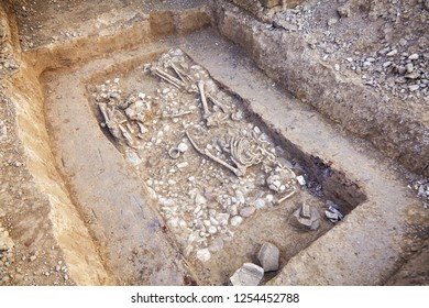 Archaeological excavations. Human remains (bones, two skeletons and skulls) in the ground, with many artefacts found in the tomb. Real digger process. Outdoors, copy space, close up.