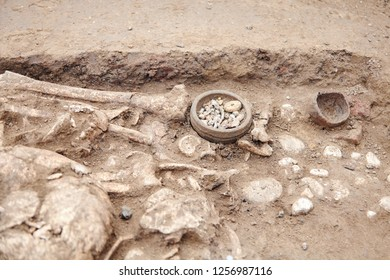 Archaeological excavations. Human remains (bones, skeleton and skull) in the ground, with many little found artefacts in the tomb. Real digger process. Outdoors, copy space, close up.