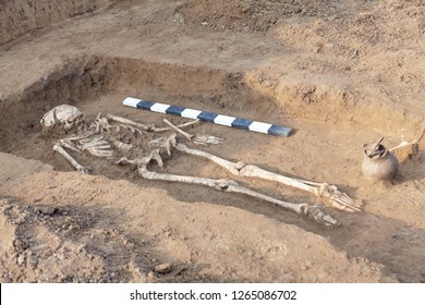 Archaeological excavations. Human remains (bones of skeleton, skulls) in the ground, with artefacts found in the tomb, ceramic jar. Real digger process. Outdoors, copy space, close up.