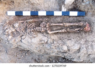 Archaeological excavations. Human remains (bones of skeleton and skull) in the ground, with little found artefacts in the tomb. Real digger process. Outdoors, copy space.