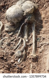 Archaeological excavations. Human remains (skull) is half in the ground with little turquoise artefacts found in the tomb. Real science digger process. Outdoors, copy space.