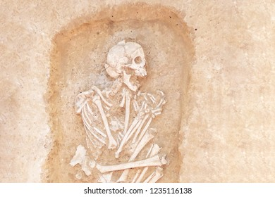 Archaeological excavations man and finds (bones of a skeleton in a human burial),   a detail of ancient research, prehistory.