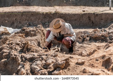 Archaeological excavations. Young archaeologist excavating part of human skeleton and skull from the ground.