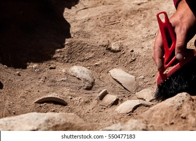Archaeological tools, Archeaologist working on site, close-up, hand and tool. - Shutterstock ID 550477183