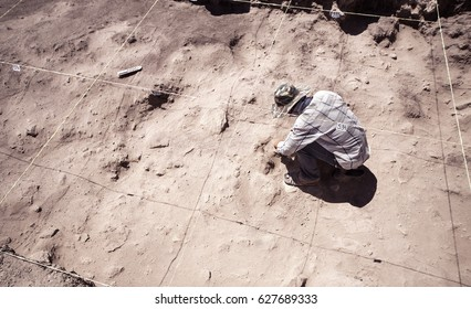 Archaeologist working in field, with special tools
