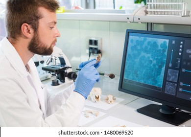 Archaeologist working in natural research lab. Laboratory assistant cleaning animal bones. Archaeology, zoology, paleontology and science concept.