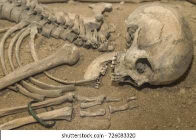 Archaeologists excavated the skeleton of a Neanderthal bones and skull with an open mouth in the ground. Prehistoric, Stone Age, Ice Age. Caveman