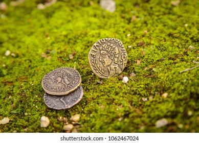 Archaic coins on garden