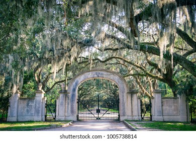Arched gateway leading to quiet southern country road lined with oak trees with overhanging branches dripping with Spanish moss