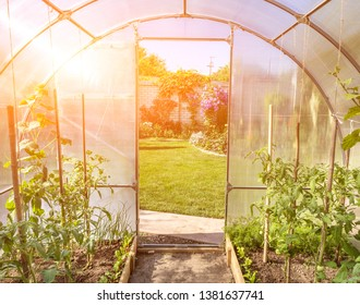 Greenhouse Arches Images, Stock Photos & Vectors   Shutterstock
