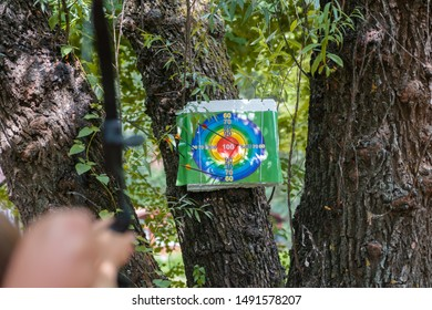 Archery target attached to a tree. An arrow sticks out of the center of the target
