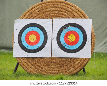 Archery targets in a field with arrows.