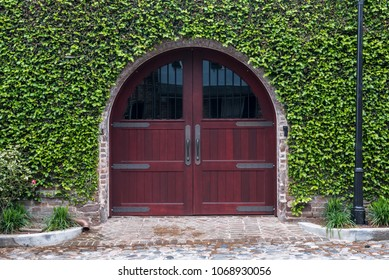 Arching Wooden Door and Ivy Wall along city street
