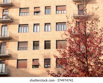 Architectural Close Up of Brick Residential Low Rise Building with Small Balconies and Obscured by Tree with Red Leaves on Sunny Autumn Day