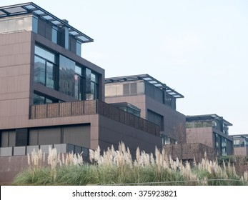 Architectural Exterior Detail of Modern Modular Homes with Rear Patios and Surrounded by Lush Plant Vegetation on Hazy Day