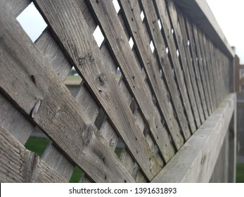 An architectural perspective photograph of decorative trellis on top of a fence