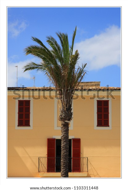architectural shapes and a palm tree create a face