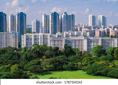 Architectural shot of typical public housing (HDB flats) painted in blue and white on a bight sunny day, set against lush greenery in the foreground, Singapore. Beautiful day with blue sky and clouds