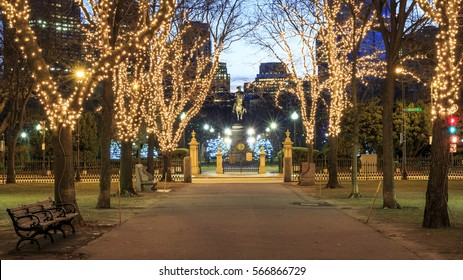 Boston Christmas Lights.Boston Christmas Tree Images Stock Photos Vectors