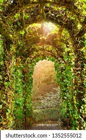 Archway of Ivy Trellis in English Garden