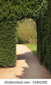 Archway through a Hedgerow in an English garden