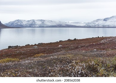 Arctic landscape in Greenland in late summer and early autumn with snowy mountains and ocean