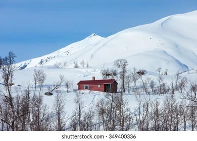 Arctic Landscape of Norway